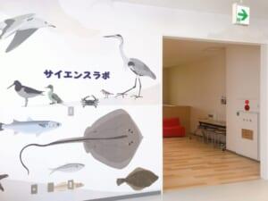 ふなばし三番瀬環境学習館 サイエンスラボ