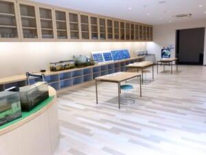 ふなばし三番瀬環境学習館 生物情報室