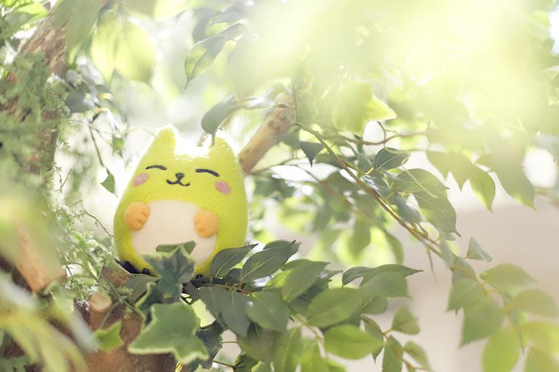 森の妖精とこっとちゃん