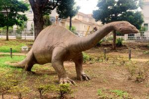 アパトサウルスのオブジェの写真
