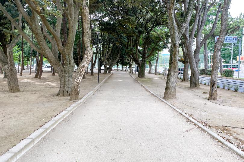 園内を囲む遊歩道の写真