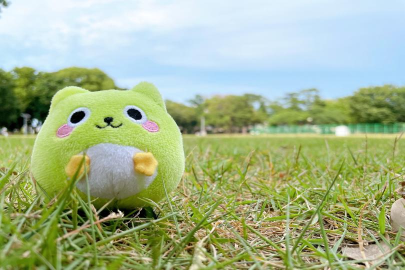 【高根木戸近隣公園】テニスコートに野球場!子供から大人まで楽しめる、広大で自然豊かな近隣公園をご紹介